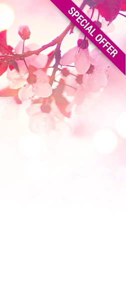 red-web-banner abloomnova - All the best skincare to make you bloom